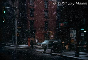 � 2001 Jay Maisel - First Snow Elizabeth St.